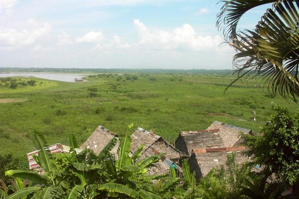 Amazon at Iquitos