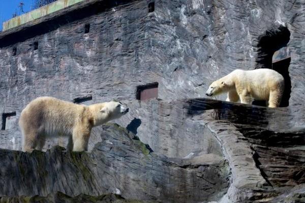 Prague-Zoo