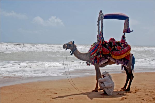 Clifton Beach in Karachi