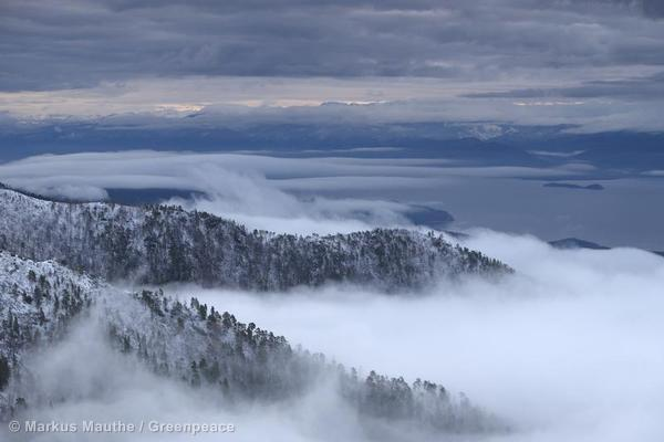 Wide aerial view above fog on Lake Baikal surrounded by wooded mountains.  Zabajkalski National Park. Luftaufnahme ueber Nebel am Baikalsee, umgeben von bewaldeten Bergen. Zabajkalski National Park.