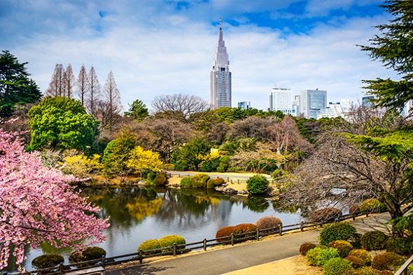 Shinjuku Botanical Garden